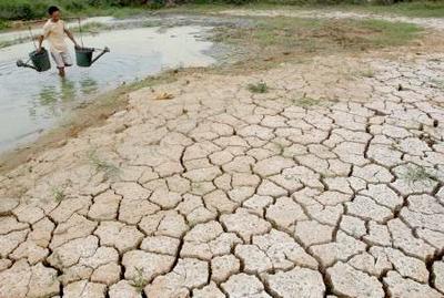 El impacto del calentamiento climático en el régimen alimentario podría causar 500.000 muertos en 2050