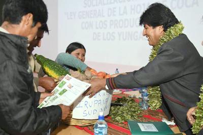 Nueva ley garantiza la siembra de coca de por vida en Bolivia