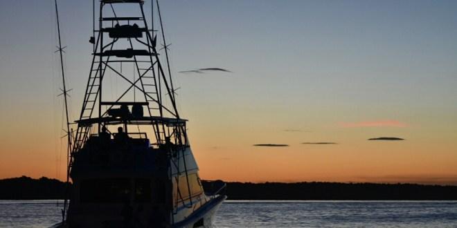 ¡A pescar el mejor Marlin!