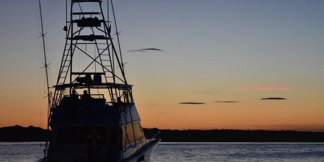 Comenzó la Pesca del Marlin