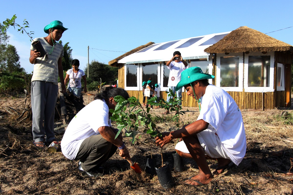 Projeto Ar, Água e Terra: Vida e Cultura Guarani realiza plantio em aldeia indígena em Porto Alegre no Dia Internacional das Florestas