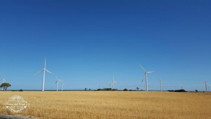 Wattle wind farm