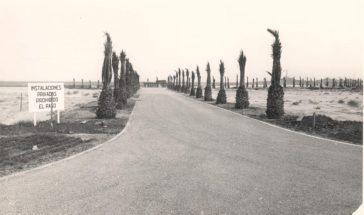 carretera de la manga (2)