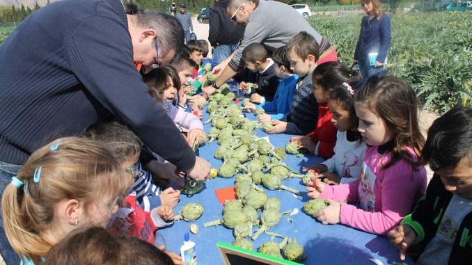 campaña escolar alcachofa vega baja