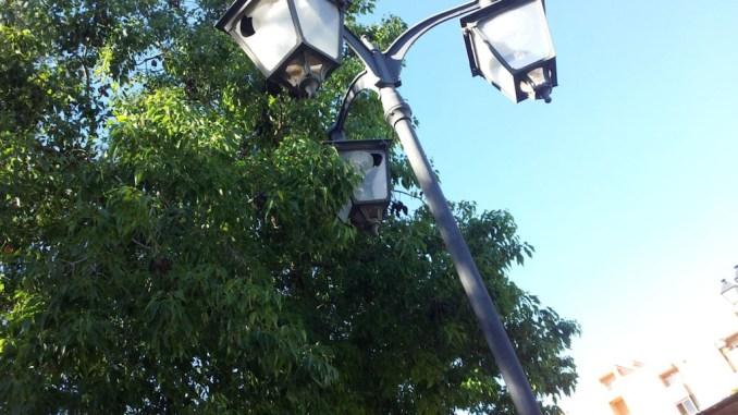 parque de la naturaleza Almoradi copia