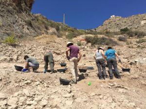 Callosa inicia el lunes la octava campaña de excavaciones arqueológicas en Laderas de Castillo
