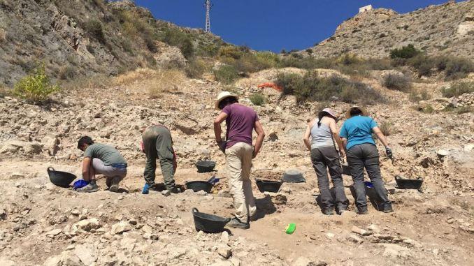 excavaciones asentamiento argárico