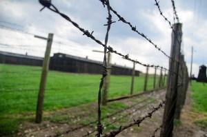 Un recuerdo para los oriolanos deportados y asesinados en los campos de concentración nazis