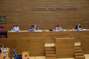 La alcaldesa de Bigastro expone en las Cortes Valencianas las necesidades para no revivir las graves consecuencias de otra DANA