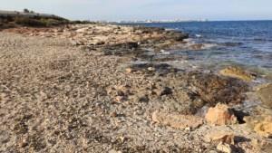 Una recogida de firmas pide devolver la playa canina de Torrevieja a su anterior ubicación