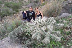 El PP critica la tardanza del Consell para actuar contra la especie invasora cactus de Arizona  en la sierra de Orihuela