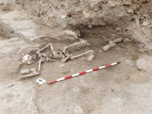 El muerto del Castell: el Carbono-14  destapa que falleció de forma violenta en el siglo XIV