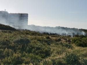 Un nuevo incendio forestal en las dunas situadas entre La Mata y Guardamar del Segura