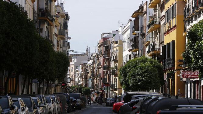 La calle Feria, en la que han ocurrido los hechos.