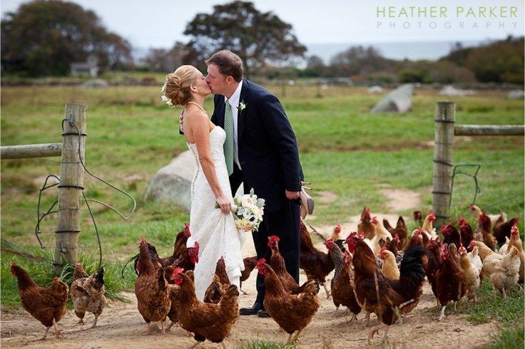 Tu mascota en tu boda