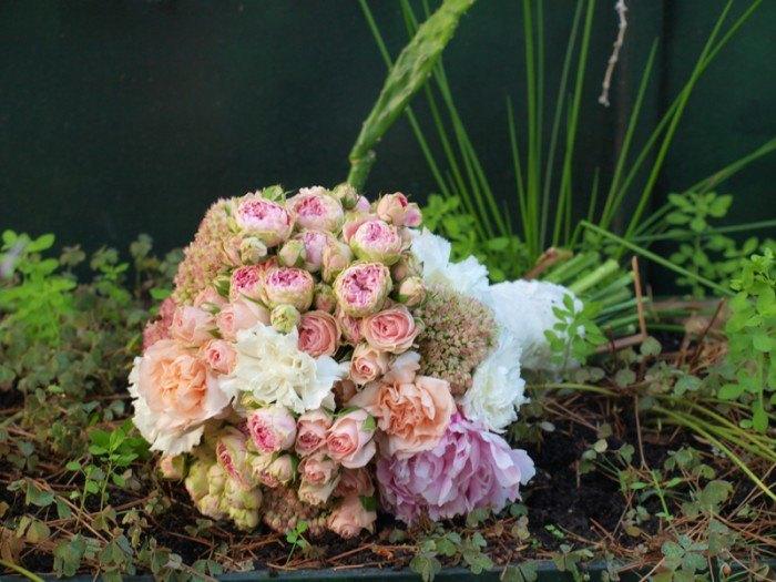 rosas de pitimini