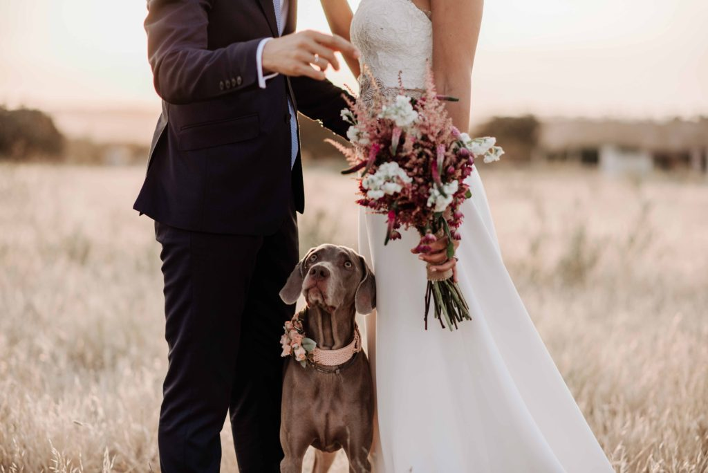 boda rustica con mascota 25 - Vestidos de Novia de Valensole Atelier 2018