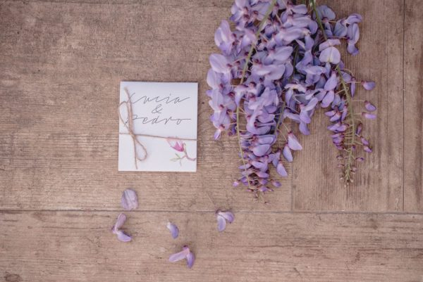 lagrimas de felicidad magnolia