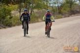 eco_pedal_bike (61)