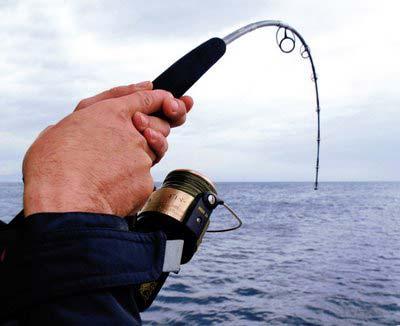 pesca-cana