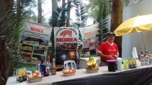 morea21-2