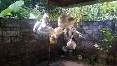 Photo of En la segunda calle del sector El Chaparral esperan el aseo desde hace nueve meses