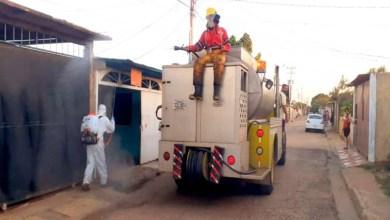 Photo of Reportan 43 nuevos casos de coronavirus en Anzoátegui, 17 en El Tigre