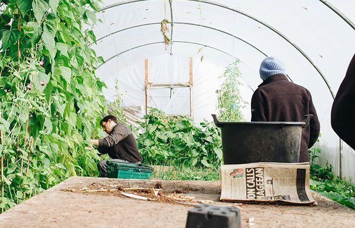 negocio de jardinería