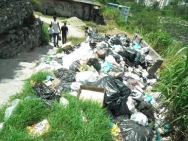 La basura atrajo ratas a la comunidad