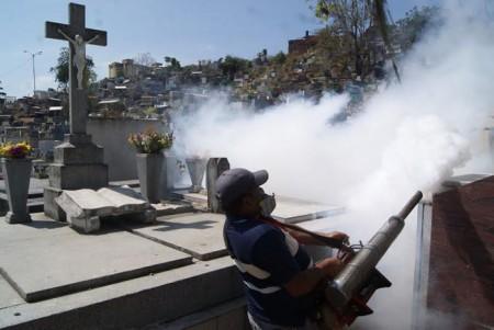 Dando la batalla a las enfermedades vectoriales como el dengue, zika y chikungunya, causadas por el al zancudo Aedes Aegypti.