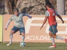 Com técnico pressionado e clássico à vista, Palmeiras visita o Cruzeiro no Mineirão