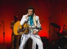 Teatro Paulo Machado de Carvalho terá tributo a Elvis Presley