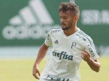 Palmeiras pode erguer troféu pela 3ª vez no Allianz