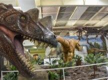 uma réplica em tamanho natural de um Tyranossaurus Rex, com 12,8 metros de comprimento, um Ceratossauro robô animatrônico. Foto: Beto Garavelho/?PSA