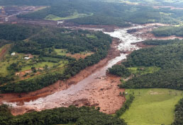 Vale perde R$ 71 bilhões na bolsa e governo fala até em afastar a direção da empresa