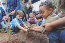 Creche de Santo André recebe plantio de árvores no Dia do Meio Ambiente