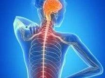 Luta contra sintomas da Esclerose Múltipla conta com aliados