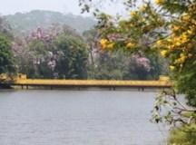 Semasa participa do Dia Mundial da Limpeza com ação no lago do Pedroso