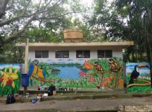 Arte em grafite marca nova etapa de projeto de revitalização do Parque do Pedroso
