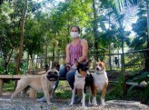 Campanha de conscientização nos parques sobre cuidados com animais domésticos e silvestres e o programa Escola Amiga do Meio Ambiente serão implementados em 2021. Foto: Alex Cavanha/PSA