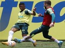Mesmo com desgaste, auxiliar projeta Palmeiras na 'força máxima' contra Libertad