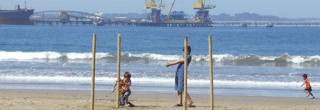 Puerto Ventanas S.A. incorpora en su estructura una Gerencia de Sustentabilidad