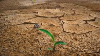 Dos sectores clave para actuar frente el cambio climático. Por @ESADEisocial