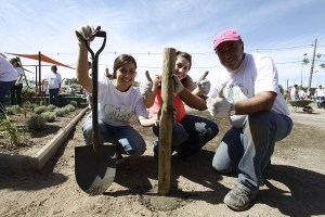 Vecinos de Colina, Fundación mi Parque y voluntarios de L'Oréal construyeron nueva área verde de 5.200 m2