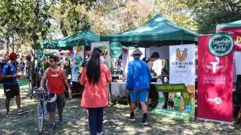 El Espíritu Verde de Lollapalooza vuelve más verde que nunca