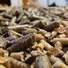 """El """"boom"""" del pellet y su desafío de convertirse en el combustible del futuro"""