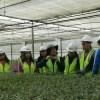 Sector Forestal fortalece sistema educativo que prepara a futuros trabajadores