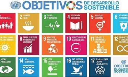 B Lab y la ONU se juntan para medir el aporte de las empresas a los Objetivos de Desarrollo Sostenible