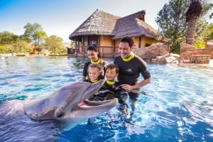"""SeaWorld Orlando Anuncia Nuevo Espectáculo con Delfines """"Dolphin Days"""""""