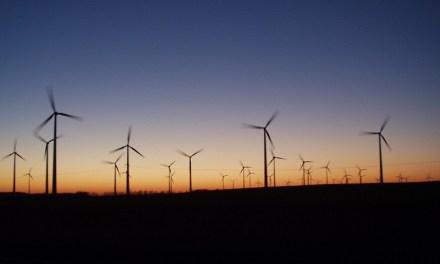 Experto sostiene que se licitarán menos proyectos de energías renovables en 2017